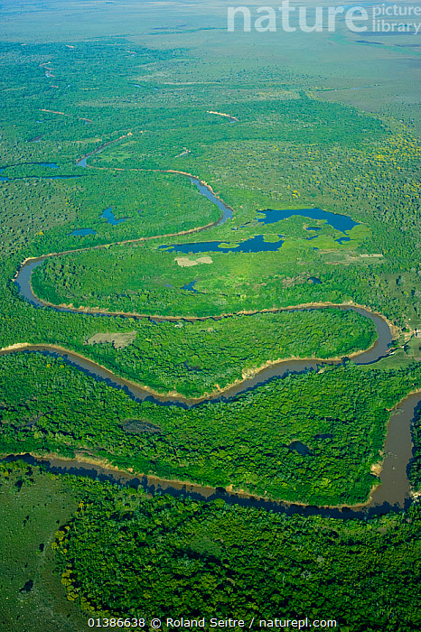 Aerial view of river, fringing forest and wetlands, natural habitat of the Blue throated / Wagler's macaw (Ara glaucogularis) Santa Ana de Yacuma, Beni, Bolivia, Critically endangered species, July 2008.  ,  BOLIVIA,GREEN,LANDSCAPES,RIVERS,SOUTH AMERICA,VERTICAL,WETLANDS,WOODLANDS  ,  Roland Seitre
