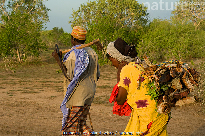Man and woman in Ishaqbini Reserve, returning from fetching fire wood. Man carrying axe, woman the wood.  Kenya, 2009.  ,  AFRICA,EAST AFRICA,KENYA,NP,OUTDOORS,PEOPLE,RESERVE,TRADITIONAL,TRIBES,TWO,National Park  ,  Roland Seitre