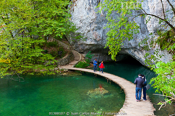 Tourists on boardwalk over lake, Plitvice Lakes National Park, Lika, Croatia, Europe, October 2011  ,  CROATIA,EASTERN EUROPE,EUROPE,GREEN,LAKES,LANDSCAPES,NP,PATHS,PEOPLE,RESERVE,ROCK FACE,ROCKS,TOURISM,WATER,National Park  ,  Juan Carlos Munoz