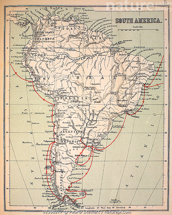 Map of South America with Voyage of the Beagle coloured in red. Appendix from 'The Voyage of HMS Beagle' (Cover Title) by Charles Darwin, New Edition 1890 John Murray publishers. Coloured print, retaining gentle age-toning of the original.  ,  19TH CENTURY,AMERICA,BEAGLE,CHARLES DARWIN,EXPLORATION,FITZROY,HISTORIC,HISTORICAL,HISTORY,HMS,ILLUSTRATIONS,MAP,MAPS,ORIGIN,PATAGONIA,SOUTH,SOUTH AMERICA,TIERRA,VERTICAL  ,  Paul D Stewart