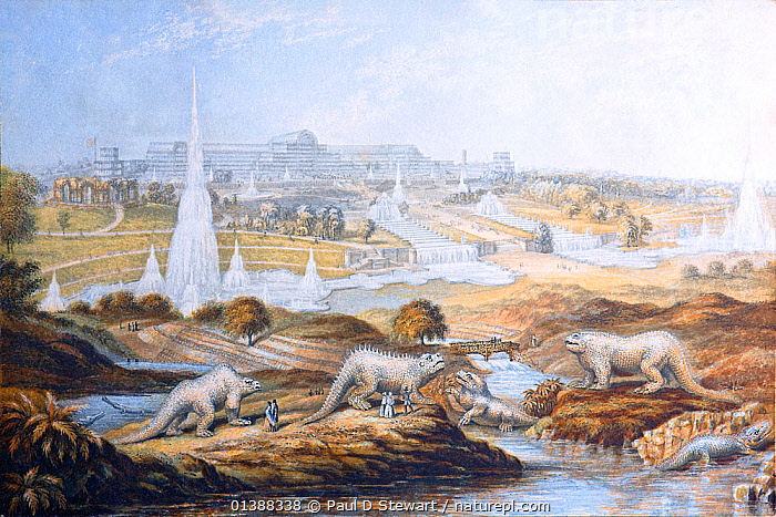 1854 illustration of Crystal Palace at its Sydenham site, with Benjamin Waterhouse Hawkins' dinosaur sculptures in the foreground. 11cm x 16.3 cm. Miniature colour print by the George Baxter patent process of mutiple ink blocks. This version of the print is softened and colour corrected for age-toning to provide the best image. Benjamin Waterhouse Hawkins' sculptures were the first models of dinosaurs ever produced, and all the more striking for being life size. Left to right they are in the water left Teleosaurus, first on land Megalosaurus, Hyaeolosaurus, Labyrinthdont (?), Iguanodon, and unidentified far right. They caused a sensation in Victorian England and ushered in the dinosaurs' enduring popularity with the general public. The models still survive in Sydenham Park, though the Crystal Palace was destroyed by fire.  ,  19TH CENTURY,BUILDINGS,DINOSAURS,EXTINCT,HISTORIC,HISTORICAL,HISTORY,HYAEOLOSAURUS,IGUANODON,ILLUSTRATIONS,LANDSCAPES,MEGALOSAURUS,MODELS,PREHISTORIC,RECONSTRUCTION  ,  Paul D Stewart