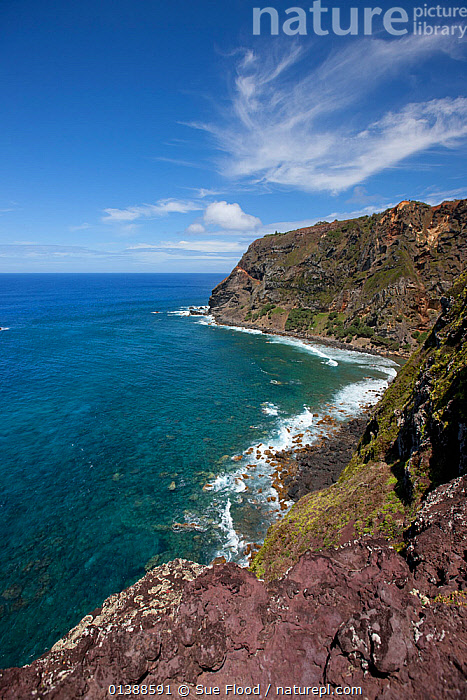 View along coastline, Pitcairn Island, Pitcairn Islands, South Pacific 2010  ,  CLIFFS,COASTAL,COASTAL WATERS,COASTS,LANDSCAPES,MARINE,PACIFIC ISLANDS,SEA,SOUTH PACIFIC,TROPICAL,TROPICS,VERTICAL,Geology,SOUTH PACIFIC ISLANDS  ,  Sue Flood