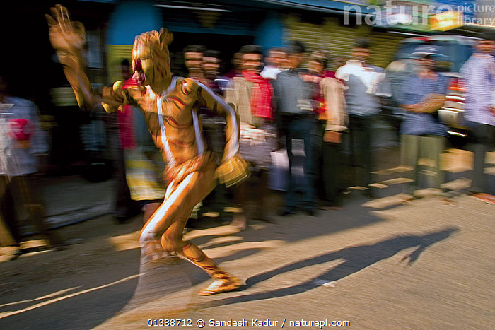 In many parts of southwestern India, humans paint themselves as tigers and dance through villages in an act known as Huli Vesha. It depicts man's intrinsic tie to the natural world and shows a deep-rooted respect for the creatures that live within it. Western Ghats, Southern India  ,  ACTION,ASIA,BLURRED,CROWDS,CULTURES,DANCE,DANCING,FESTIVALS,HIGHLANDS,HULI,INDIA,INDIAN SUBCONTINENT,MALES,MOTION,MOVEMENT,PEOPLE,RUNNING,SAHYADRI,SOUTHERN INDIA,TIGERS,TRADITIONAL,TRIBAL,TRIBES,TROPICAL,VESHA  ,  Sandesh Kadur