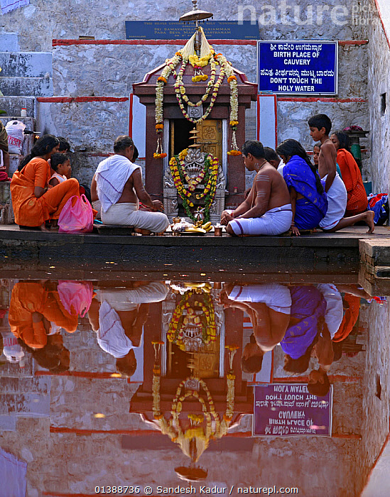People worshipping gods at Talacauvery, the sacred birthplace of the River Cauvery, Western Ghats, Southern India. No release available.  ,  ASIA,CULTURES,FAMILIES,GODS,HINDU,INDIAN SUBCONTINENT,KAVERI,OFFERINGS,PEOPLE,RELIGION,RELIGIOUS,RIVERS,SACRED,SAHYADRI,SHRINE,TALAKAVERI,VERTICAL,WATER,Catalogue5  ,  Sandesh Kadur
