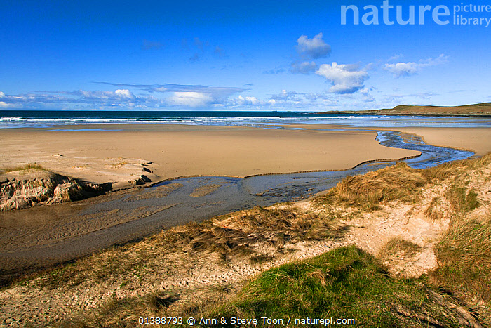 Machir Bay, Islay, Outer Hebrides, Scotland, UK, March 2012  ,  BEACHES,COASTS,EUROPE,LANDSCAPES,SAND DUNES,SCOTLAND,UK,United Kingdom , Inner Hebrides  ,  Ann & Steve Toon