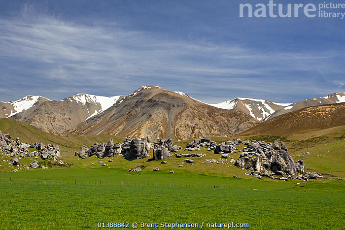 Snow-capped mountains with the limestone rocks of Castle Hill in the foreground, Castle Hill, Canterbury, New Zealand, November 2010.  ,  AUSTRALASIA,GEOLOGY,GRASS,GREEN,LANDSCAPES,MOUNTAINS,NEW ZEALAND,ROCKS,SKY,SNOW,Plants  ,  Brent Stephenson