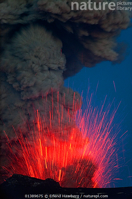 Ash plume and lava erupting from the Eyjafjallaj�kull volcano, Iceland, May 2010  ,  ACTION,ERUPTING,ERUPTION,EUROPE,GEOLOGY,ICELAND,LANDSCAPES,LAVA,RED,SMOKE,SPRAY,VERTICAL,VOLCANOES,Catalogue5  ,  Erlend Haarberg