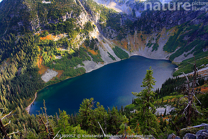 Lake Ann surrounded by Douglas firs (Pseudotsuga menziesii) Silver firs (Abies alba) and other conifers in the area of Rainy Pass of North Cascades National Park, North Cascades National Park, Cascade Range, Washington, October 2009.  ,  Abies alba,AERIALS,AUTUMN,BLUE,Cascade Range,catalogue5,conifer,CONIFERS,Douglas fir,elevated view,GYMNOSPERMS,HIGH ANGLE SHOT,Lake,Lake Ann,LAKES,LANDSCAPES,MOUNTAINS,nature,Nobody,North Cascades National Park,NORTH AMERICA,NP,outdoors,PINACEAE,PINES,PLANTS,Pseudotsuga menziesii,Rainy Pass,RESERVE,ROCKS,scenery,Scenic,Silver fir,SNOW,TREES,USA,Washington,WATER,woodland,National Park  ,  Konstantin Mikhailov