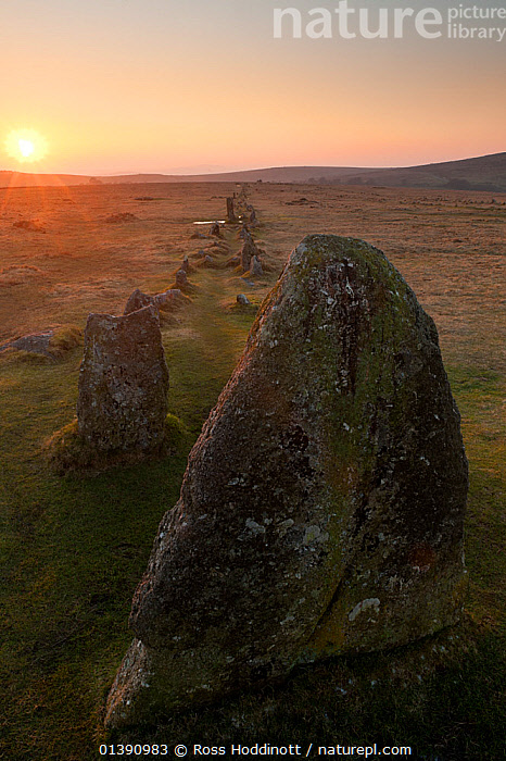 Merrivale ancient Stone Row at sunset, Dartmoor National Park, Devon, UK, March 2012.  ,  ANCIENT,ENGLAND,EUROPE,HISTORICAL,LANDSCAPES,MOORLAND,NATIONAL PARKS,NP,RESERVE,ROCKS,STANDING STONES,SUN,SUNSET,UK,VERTICAL,National Park,United Kingdom,Catalogue5  ,  Ross Hoddinott