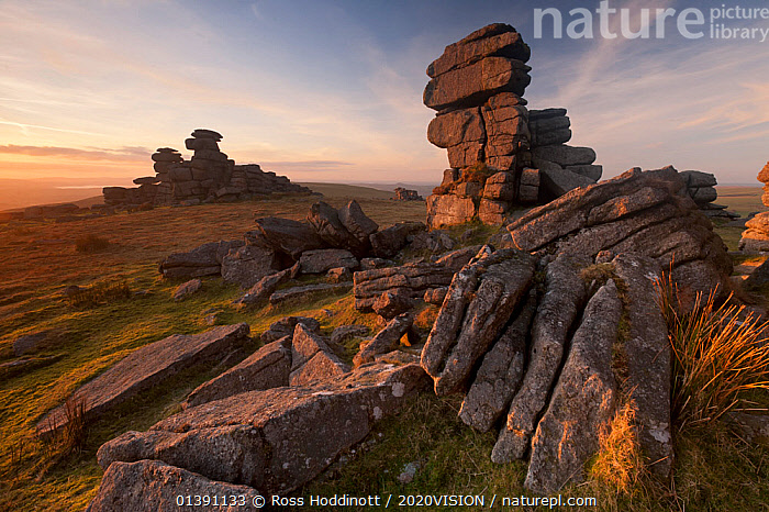 Great Staple Tor in late evening light, Dartmoor National Park, Devon, England, UK. January. 2020VISION Book Plate.  ,  2020VISION,2020VISION BOOK PLATE,BOGS,EUROPE,LANDSCAPES,MOORLAND,PEATLAND,RESERVE,ROCK FORMATIONS,ROCKS,SUNRISE,SUNSET,TORS,UK,Wetlands,United Kingdom,2020cc  ,  Ross Hoddinott / 2020VISION