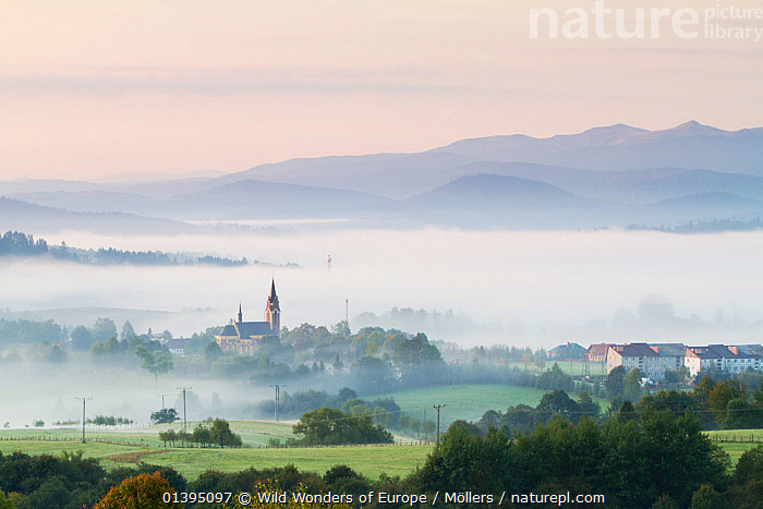 Fog rising from the meadows near Lutowiska, Bieszczady National Park, Poland, September 2011, BUILDINGS,CHURCHES,COUNTRYSIDE,EASTERN CARPATHIANS,EASTERN EUROPE,EUROPE,FLORIAN MOLLERS,FOG,LANDSCAPES,MIST,NP,POLAND,RESERVE,REWILDING,TOWNS,WWE,National Park, Wild Wonders of Europe / Möllers