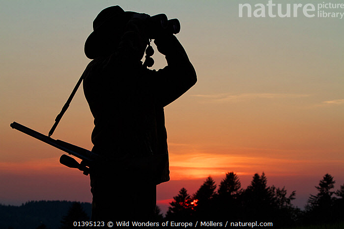 Hunter looking through binoculars at sunset, Leszczowate, Bieszczady region, Poland, September 2011 Model released  ,  EASTERN CARPATHIANS,EASTERN EUROPE,EUROPE,FLORIAN MOLLERS,GUNS,HUNTING,PEOPLE,POLAND,REWILDING,SILHOUETTES,SUNSET,WWE  ,  Wild Wonders of Europe / Möllers