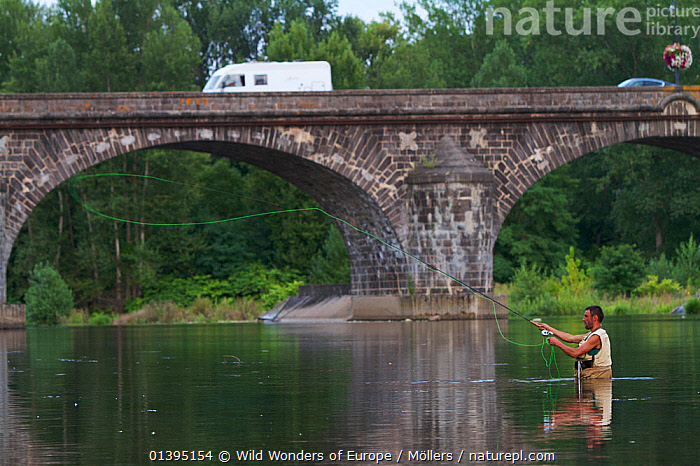 Man fly-fishing in the river Allier, Pont-du-Chateau, Auvergne, France, August 2010, model released  ,  BRIDGES,EUROPE,FISHING,FLORIAN MOLLERS,FRANCE,MAN,OUTDOOR PURSUITS,PEOPLE,REFLECTIONS,RIVERS,VEHICLES,WWE  ,  Wild Wonders of Europe / Möllers