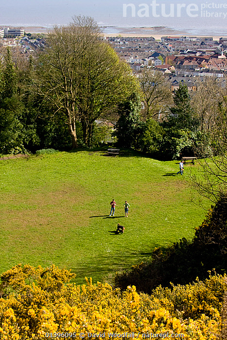 Rosehill Community Park with visitors, important greenspace in an urban environment, Swansea, Wales, UK 2009  ,  CITIES,DOGS,EUROPE,GREENSPACE,GROUPS,LANDSCAPES,LEISURE,NATURE,OUTDOORS,PARKS,PEOPLE,PETS,RECREATION,SOUTH WALES,UK,URBAN,VERTICAL,WALES,WALKING,United Kingdom  ,  David Woodfall