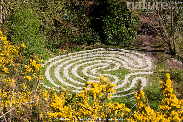 Maze, made out of cockle shells, in Rosehall Quarry Community Park, Swansea 2009  ,  EUROPE,GREENSPACES,LANDSCAPES,MAZES,OUTDOORS,PARKS,RECREATION,SOUTH WALES,TREES,UK,URBAN,WALES,PLANTS,United Kingdom  ,  David Woodfall