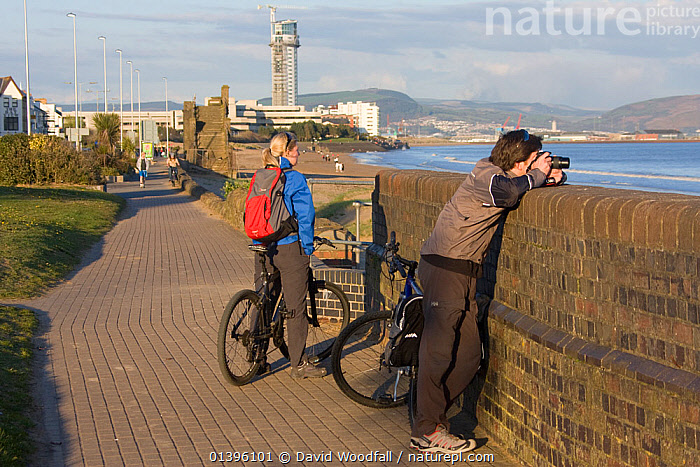 Couple enjoying cycle track alongside beach in urban environment, Swansea Bay, Wales, UK 2009  ,  BICYCLES,BUILDINGS,COASTS,EUROPE,LANDSCAPES,LEISURE,OUTDOORS,PEOPLE,RECREATION,SOUTH WALES,TRANSPORT,UK,WALES,United Kingdom  ,  David Woodfall