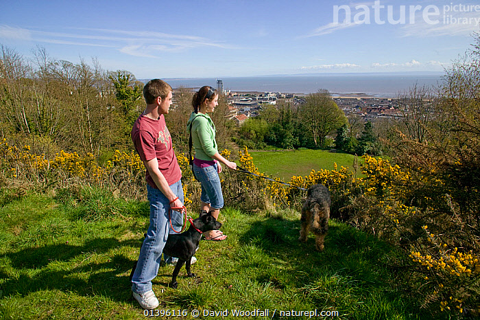 Couple with dogs overlooking Rosehill Quarry Community Park, importance of greenspace in city, Swansea, Wales, UK 2009  ,  CITIES,COUPLE,DOGS,DOMESTICATED,EUROPE,GREENSPACE,LANDSCAPES,LEISURE,MAMMALS,NATURE,OUTDOORS,PAIR,PARKS,PEOPLE,PETS,PLANTS,SOUTH WALES,TWO,UK,URBAN,WALES,WALKING,United Kingdom  ,  David Woodfall
