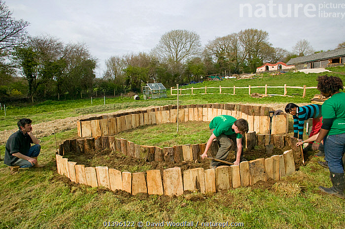 Young volunteers help create raised planting beds for growing food, Down to Earth environmental project, Murton, Gower, South Wales, UK 2009  ,  AGRICULTURE,BEDS,BUILDING,COMMUNITY,CREATING,EUROPE,FOOD PRODUCTION,MAKING,MATERIALS,PEOPLE,PROJECT,SOUTH WALES,SUSTAINABLE,UK,VOLUNTEERS,WALES,United Kingdom  ,  David Woodfall