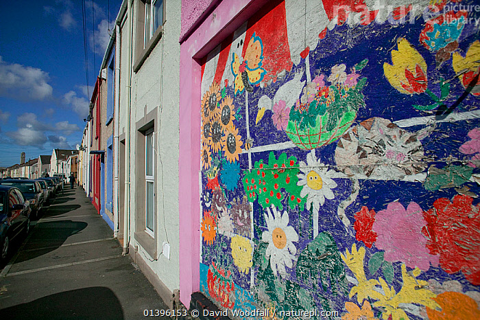 Community art in urban street depicting wildlife to brighten up street, Western street, Swansea, Wales, UK 2009  ,  ART,BUILDINGS,CITIES,COLOURFUL,COMMUNITY,EUROPE,FACADE,INNOVATIVE,MANMADE,PAINTED,PAINTINGS,PROJECT,ROADS,SOUTH WALES,STREETS,UK,URBAN,WALES,United Kingdom  ,  David Woodfall