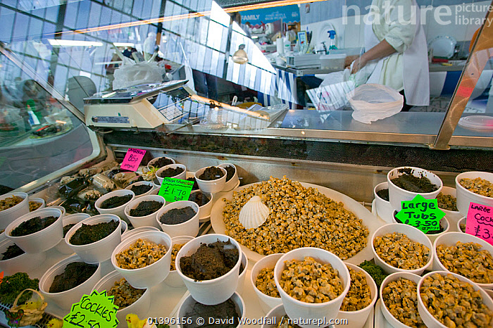 Sustainable marine sea foods, Laverbread (seaweed) and cockles for sale in community market, Swansea, Wales, UK 2009  ,  EUROPE,FOOD,MARKETS,PEOPLE,SEAFOOD,SOUTH WALES,UK,WALES,United Kingdom  ,  David Woodfall