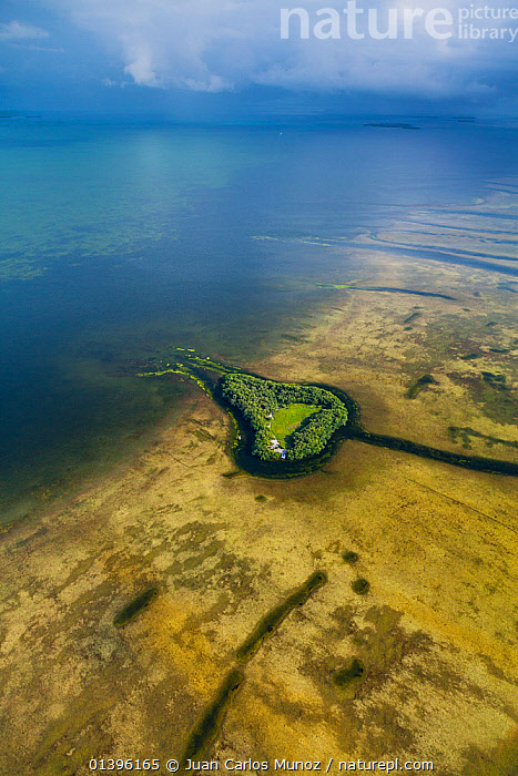 Aerial view of island in Everglades National Park, Florida, USA, February 2012  ,  AERIALS,COASTS,ISLANDS,LANDSCAPES,NP,SEA,USA,VERTICAL,WATER,National Park,North America  ,  Juan Carlos Munoz