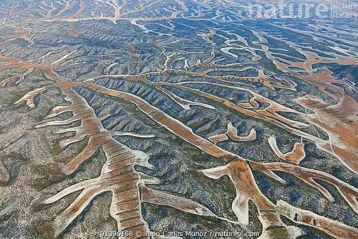 Aerial view of patterns created by agricultural work on land, Los Monegros, Zaragoza Province, Aragon, Spain, July 2011  ,  ABSTRACT,AERIALS,AGRICULTURE,ARAGON,ARTY,EUROPE,FARMLAND,FIELDS,LANDSCAPES,MONEGROS,PATCHWORK,PATTERNS,SPAIN,ZARAGOZA  ,  Juan Carlos Munoz