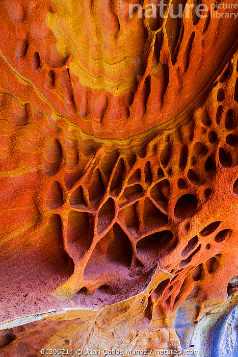 Detail of geological rock formations in the sandstone cliffs of Jaizkibel Beach, Gipuzkoa, Basque Country, Spain, May 2012  ,  CLIFFS,CLOSE UPS,COASTS,DETAILS,EUROPE,GEOLOGY,ORANGE,PATTERNS,RED,ROCK FORMATIONS,SPAIN,VERTICAL  ,  Juan Carlos Munoz