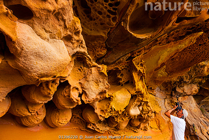 Man photographing details of geological rock formations in the sandstone cliffs of Jaizkibel Beach, Gipuzkoa, Basque Country, Spain, May 2012  ,  CLIFFS,COASTS,EUROPE,GEOLOGY,MAN,PEOPLE,PHOTOGRAPHY,ROCK FORMATIONS,SPAIN  ,  Juan Carlos Munoz