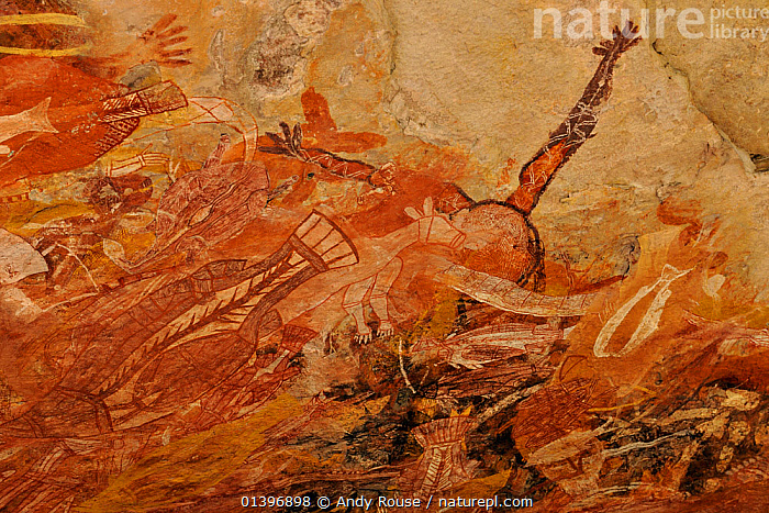 Aboriginal cave art, Arnhemland, North West Territories, Australia, May 2009  ,  ABORIGINE,ANCIENT,ANIMALS,ANIMALS IN ART,ART,AUSTRALASIA,AUSTRALIA,CAVE PAINTINGS,CAVES,CULTURES,DETAIL,OLD,PAINTINGS,ROCKART,ROCKS,TRIBES  ,  Andy Rouse