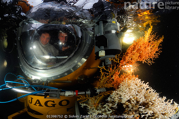 Submersible JAGO surfacing with deepsea coral samples from Sula Reef off the coast of Norway. Chief Scientist Dr. Armi (left) from GEOMAR Kiel and pilot J�rgen Schuaer (right) September 2011, editorial use only. Photo taken in cooperation with GEOMAR coldwater coral research project  ,  ANTHOZOANS,CNIDARIANS,COLD,CORALS,DEEPSEA,EUROPE,HARD CORALS,INVERTEBRATES,MARINE,NORWAY,POLAR,SCANDINAVIA,SUBMERSIBLE,TEMPERATE,UNDERWATER,Cnidaria  ,  Solvin Zankl / GEOMAR