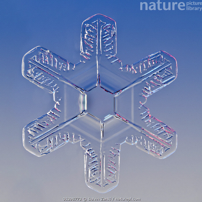 Snowflake magnified under microscope, Lilehammer, Norway  ,  CRYSTALS,CUTOUT,FLAKES ,MICROSCOPIC,PATTERNS,SNOW,SNOWFLAKE,SNOWFLAKES,SYMMETRY,WEATHER,WINTER,Europe,Scandinavia,Catalogue5  ,  Solvin Zankl