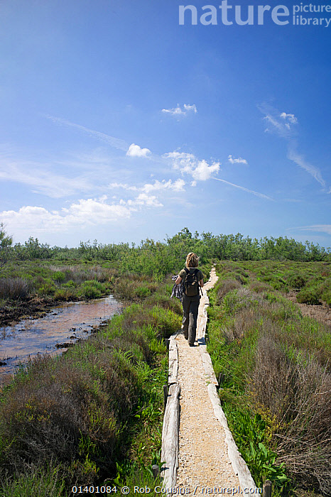 Woman walking along path through nature trail, Salin de Badon, Camargue Nature Reserve, France, Model Released, May 2012  ,  CLOUDS,EUROPE,FRANCE,LANDSCAPES,PEOPLE,RESERVE,SKY,VERTICAL,WALKING,WETLANDS,WOMAN,Weather  ,  Rob Cousins