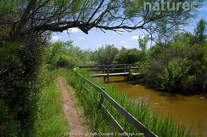 Nature trail at Salin de Badon in the Camargue Nature Reserve, France, May 2012  ,  EUROPE,FRANCE,LANDSCAPES,RESERVE,RIVERS,STREAMS,WATER,WETLANDS  ,  Rob Cousins