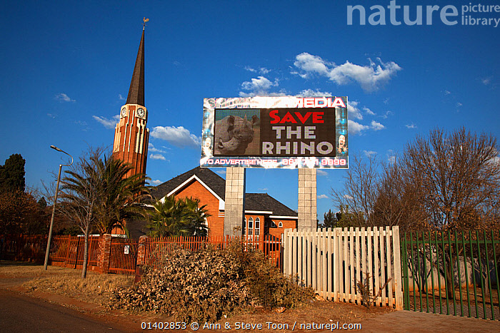 South African church with save the rhino anti-poaching slogan on electronic advertising billboard, Klerksdorp, North west province, South Africa, June 2012. Editorial use only  ,  ADVERTISING,AFRICA,BUILDINGS,CHURCHES,CONSERVATION,LANDSCAPES,POACHING,RHINO,SKY,SOUTH AFRICA,SOUTHERN AFRICA , rhino, rhinoceros, rhinos,  ,  Ann & Steve Toon