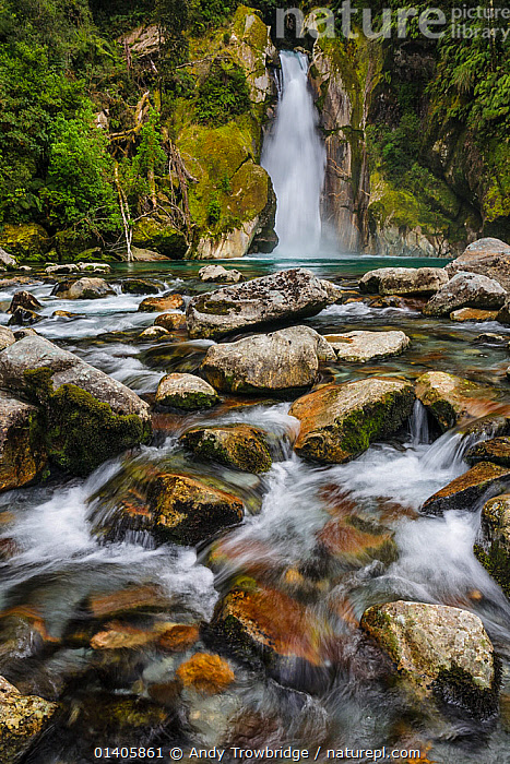 Nature Picture Library Giant Gate Falls On The Milford