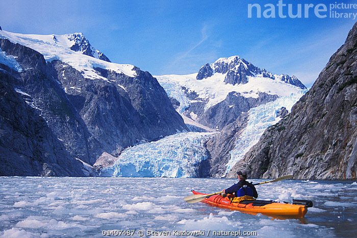 Kayaker in front of Bear Glacier, Kenai Fjords National Park, Alaska, USA. No release available.  ,  alaska,Bear Glacier,catalogue5,COASTAL WATERS,exploration,fjords,GLACIAL FEATURES,GLACIERS,ICE,kayak,kayaker,KAYAKING,KAYAKS,Kenai Fjords,LANDSCAPES,LEISURE,MAN,mid adult,MOUNTAINS,national park,nature,NORTH AMERICA,NP,one man only,one person,outdoors,PEOPLE,recreation,remote,RESERVE,SNOW,snowcapped,TOURISM,Travel,USA,WATER,WATERSPORTS,Geology,SPORTS,BOATS  ,  Steven Kazlowski