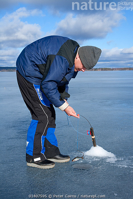 Ice fishing on a freshwater lake, Sweden, April 2008  ,  ANGLING,COLD,EUROPE,FISHING,FOOD,HUNTING,HUNTING FOOD,ICE,LAKES,LEISURE,MALES,MAN,PEOPLE,RECREATION,SCANDINAVIA,SUSTAINABLE,SWEDEN,TRADITIONAL,VERTICAL,WATER,WINTER,SPORTS  ,  Peter Cairns