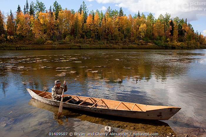 On an autumn day, Gennadiy Kubolev, a Selkup man, about to go fishing in his 'Anty' (traditional dugout boat) on the River Shirta, Krasnoselkup, Yamal, Western Siberia, Russia, ARCTIC,ASIA,AUTUMN,BOATS,CANOE,CIS,CULTURES,DUGOUT,DUGOUTS,FISHING,INDIGENOUS,LANDSCAPES,MALES,MAN,NATIVE,PEOPLE,RIVERS,RUSSIA,SELKUP,SIBERIA,TRADITIONAL,TRANSPORT,TRIBAL,TRIBES,WATER,WESTERN SIBERIA,WOODEN ,Tribes,, Bryan and Cherry Alexander