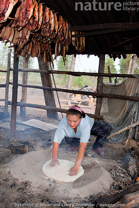 Lena Kuboleva, a young Selkup woman, making traditional Selkup bread by baking dough in hot sand at her family's summer camp in the forest, Krasnoselkup, Yamal, Western Siberia, Russia., ARCTIC,ASIA,BAKING,BREAD,CAMPS,CIS,COOKING,CULTURES,FEMALES,FIRE,FOOD,INDIGENOUS,KNEADING,MAKING,NATIVE,PEOPLE,RUSSIA,SELKUP,SIBERIA,TRADITIONAL,TRIBAL,TRIBES,VERTICAL,WESTERN SIBERIA,WOMAN,WOMEN,WORKING, Bryan and Cherry Alexander