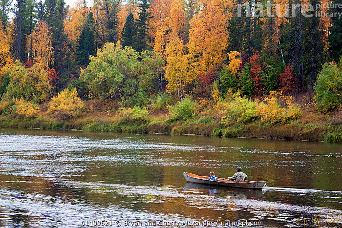 On an autumn day, Gennadiy Kubolev, a Selkup man, takes his grandaughter out fishing in his 'Anty' (traditional dugout boat) on the River Shirta, Krasnoselkup, Yamal, Western Siberia, Russia, ARCTIC,ASIA,AUTUMN,BOATS,BOREAL,CANOE,CHILDREN,CIS,CULTURES,DUGOUT,FISHING,FORESTS,FRESHWATER,INDIGENOUS,JUVENILE,LANDSCAPES,LEARNING,MAN,NATIVE,PEACEFUL,PEOPLE,RIVERS,RUSSIA,SELKUP,SIBERIA,TAIGA,TRADITIONAL,TRAVELLING,TREES,TRIBAL,TRIBES,WATER,WESTERN SIBERIA,WOODLANDS,YOUNG,PLANTS ,Tribes,, Bryan and Cherry Alexander