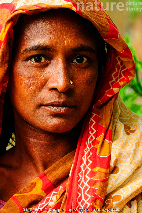 Portrait of a woman from the small village of Gagramari in the Sundarbans National Park, UNESCO World Heritage Site site, Bangladesh, June 2012, ASIA,ASIAN,ASIAN ETHNICITY,BANGLADESH,FACES,NP,PEOPLE,PORTRAITS,RESERVE,VERTICAL,WOMAN,National Park, Enrique Lopez-Tapia