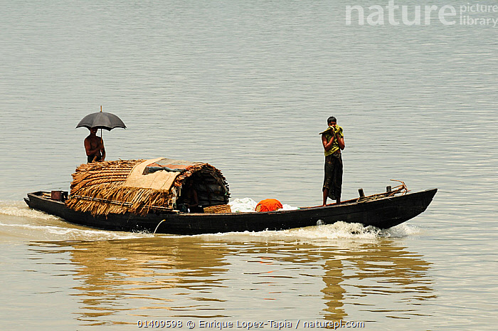 People in  boat on a river in the Sundarbans National Park, the largest mangrove swamp in the world. Bangladesh. UNESCO World Heritage Site. June 2012., ASIA,BANGLADESH,BOATS,FISHING BOATS,NP,OPEN BOATS,PEOPLE,RESERVE,RIVERS,SWAMPS,TRADITIONAL,WOODEN,INDIAN-SUBCONTINENT,National Park,Wetlands, Enrique Lopez-Tapia