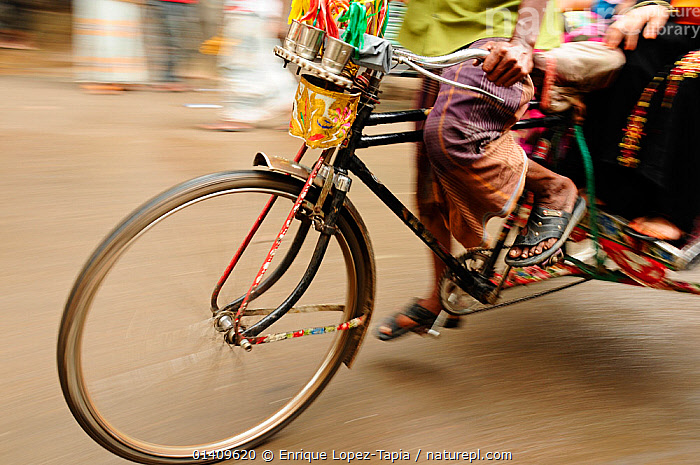 Close-up of the front wheel of a bicycle taxi, Dhaka, Bangladesh, June 2012., ASIA,BANGLADESH,BICYCLES,CITIES,CYCLING,FEET,LEGS,PASSENGERS,PEOPLE,TRANSPORT,TRANSPORTATION,URBAN,WORKING, Enrique Lopez-Tapia