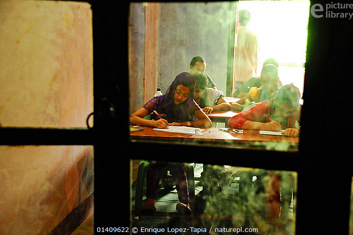 School children studying in a classroom in Dhaka, Bangladesh, June 2012., ASIA,BANGLADESH,CHILDREN,CITIES,INDOORS,LEARNING,PEOPLE,SCHOOLS,STUDYING,URBAN,WINDOWS, Enrique Lopez-Tapia