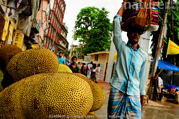 Kathal / jackfruits on a market stall, with a man walking past carrying cloths on his head, Dhaka, Bangladesh, June 2012., ASIA,BANGLADESH,BUILDINGS,CARRYING,CITIES,MAN,PEOPLE,URBAN, Enrique Lopez-Tapia