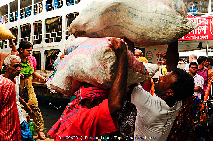 Stevedores or dock workers carrying cargo to and from the boats, Sadarghat water front, Dhaka, Bangladesh June 2012., ASIA,BANGLADESH,BOATS,CARGO,CARGO BOATS ,CARRYING,CITIES,DOCKS ,MEN,PEOPLE,URBAN,WORKING,INDIAN-SUBCONTINENT,WORKING-BOATS, Enrique Lopez-Tapia