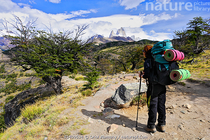Hiker on  trail to Laguna Torre below Cerro Torre, with Mount Fitz-Roy in the background, Los Glaciares National Park, Patagonia, Argentina. January 2006. Model released., BACKPACK ,HIKING,LANDSCAPES,MOUNTAINS,NP,PEOPLE,RESERVE,SOUTH AMERICA,TOURISM,WALKING,WOMAN,National Park, Oriol Alamany