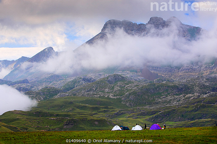 Mountaineers camping in Aguas Tuertas with mist in Hecho valley, Los Valles Occidentales Natural Park, Pyrenees, Aragon, Spain, CAMPING,EUROPE,LANDSCAPES,MIST,MOUNTAINEERING,MOUNTAINS,TENTS,TREKKING,SPORTS, Oriol Alamany