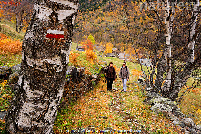 Two women hiking in Noarre along the  Haute Route Pyreneene (HRP) , Cardos Valley, Alt Pirineu Natural Park, Pyrenees, Catalonia, Spain. Note the red and white waymarker for long distance paths. October, EUROPE,HIKING,LANDSCAPES,MOUNTAINS,PATHS,PEOPLE,TREKKING,WALKING, Oriol Alamany