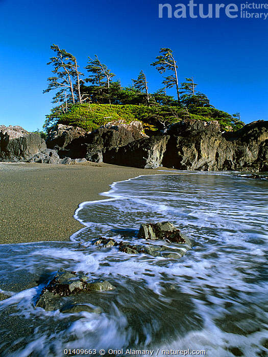 Waves along  the beach on South Beach Trail, Pacific Rim National Park. Vancouver Island, British Columbia, Canada, BEACHES,CANADA,COASTS,NORTH AMERICA,NP,PACIFIC OCEAN,RESERVE,VERTICAL,National Park, Oriol Alamany
